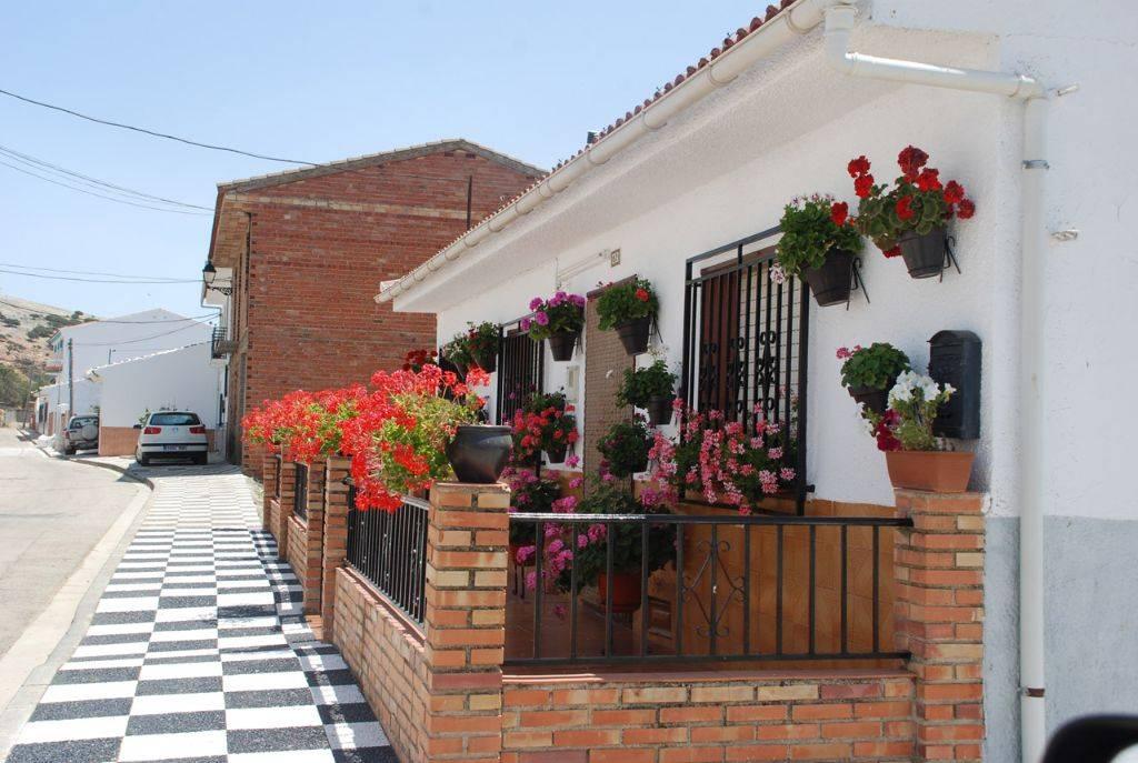 Fotos-Municipio-Zafarraya-El-Almendral-160