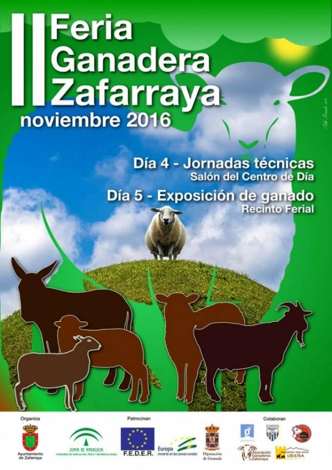 Feria_ganado16